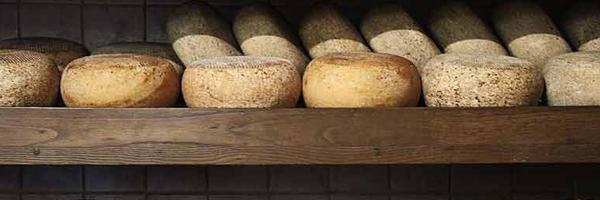 tour-del-formaggio